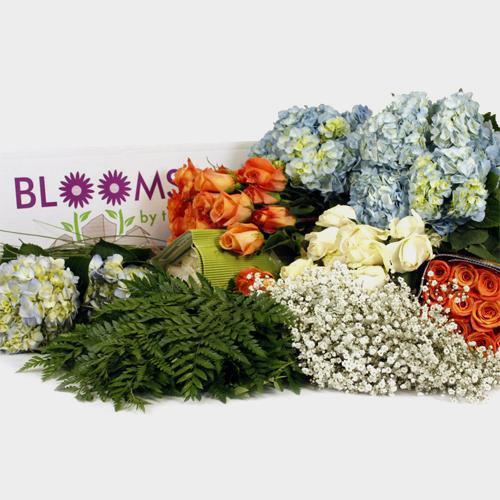 Traditional Rose & Hydrangea DIY Wedding Pack