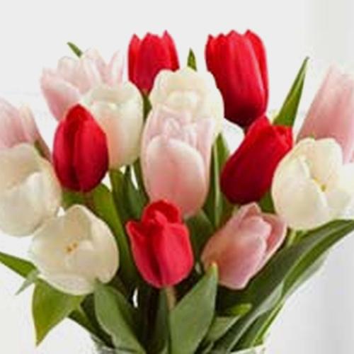 Tulips Valentines Pack