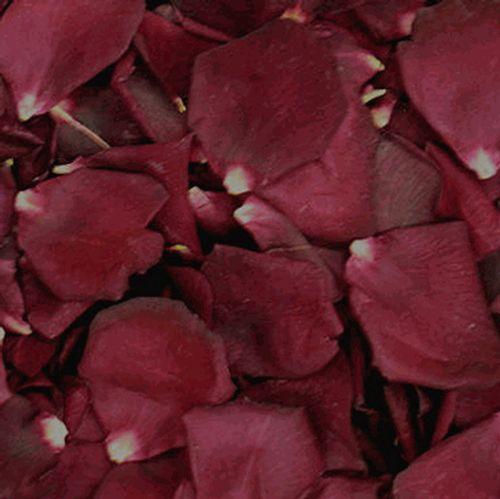 Crimson Red FD Rose Petals (30 Cups)