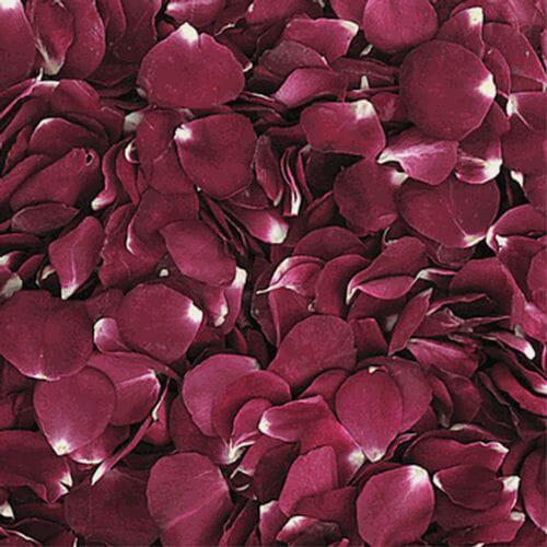 Merlot Red FD Rose Petals (30 Cups)