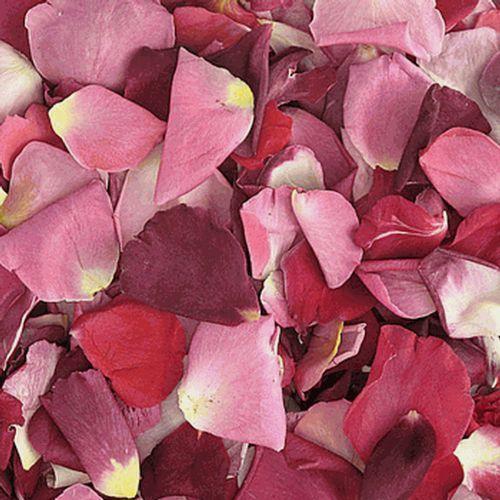 Very Berry Blend FD Rose Petals (30 Cups)