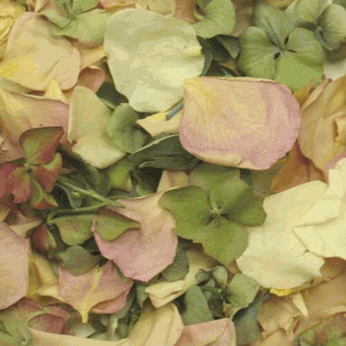 Spring Love Blend FD Rose & Hydrangea Petals (30 Cups)