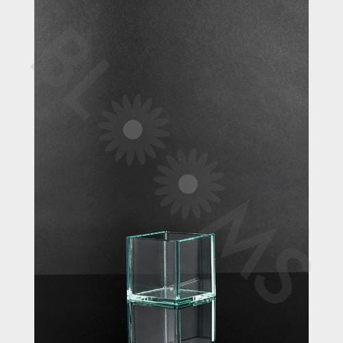 Xsmall Square Glass Vase (2.5