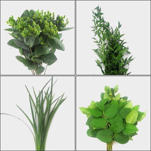 Simple Greens Bulk Pack