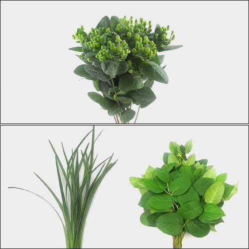 Simple Greens Bulk Pack - Mini