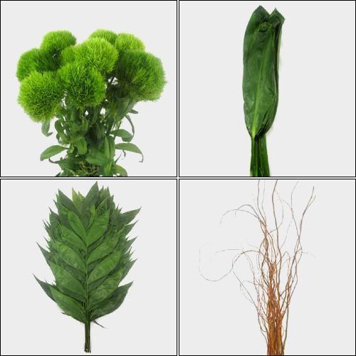 Sleek Greens & Fillers Bulk Pack