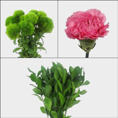 Carnation Flowers Wedding Pack