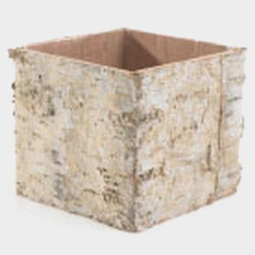Birch Square Vase 4.75