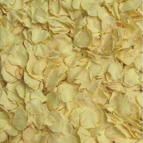 Champagne Rose Petals (30 Cups)