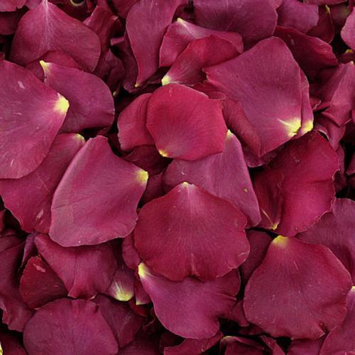Fame Burgundy / Pink Rose Petals (30 Cups)