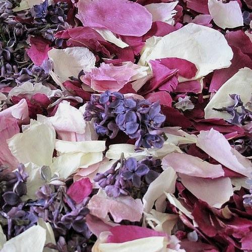 Peony & Lilac Blend Petals (30 Cups)
