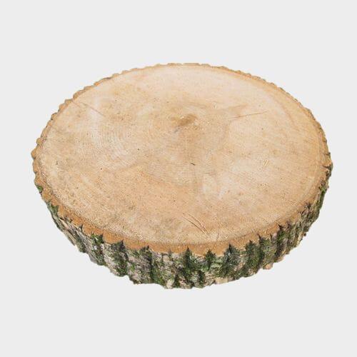 14 inch Birch Log Slice