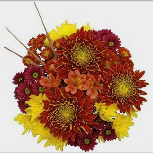 Mixed Bouquet 10 Stem - Bronze Delight