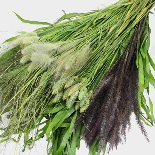 Assorted Grasses Bulk