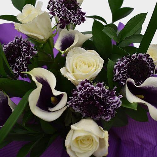 Premium Gift Bouquet - Lavender & White Velvet