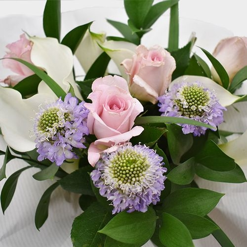 Premium Gift Bouquet - Pink & White Velvet