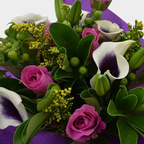 Premium Gift Bouquet Purple & White Mellow