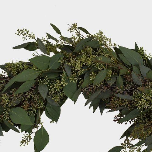 Garland Seeded Eucalyptus 8 Feet