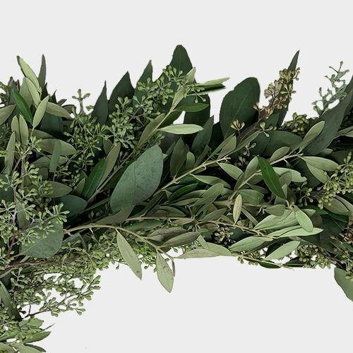 Garland Seeded Eucalyptus & Olive - 8 Feet