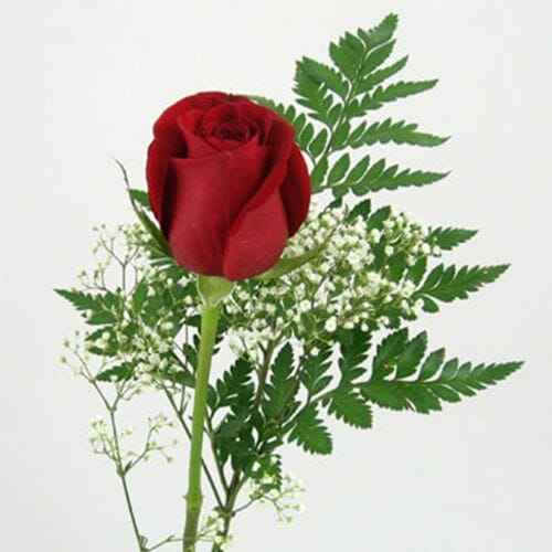 Rose Bouquet 1 Stem - Red Freedom 50 cm