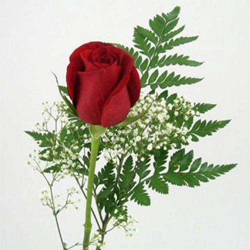 Rose Bouquet 1 Stem - Red Freedom 50 cm