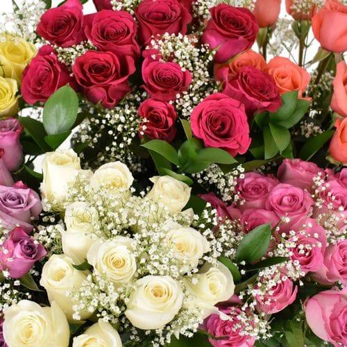 Rose Bouquet 6 Stem - Assorted Colors 50cm